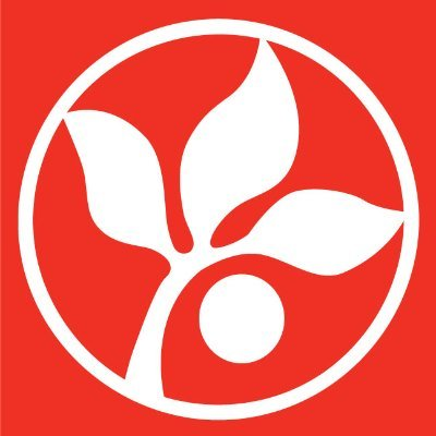 white seedling clipart on red background