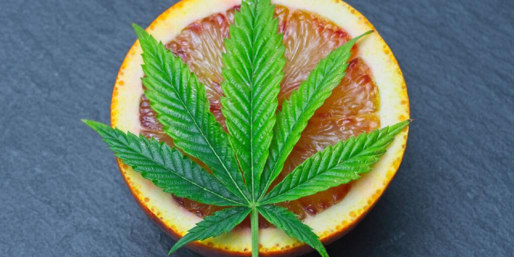 Glen Burnie marijuana dispensary
